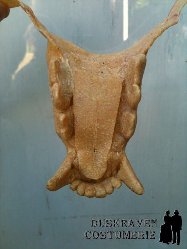 Wolf Lower Jaw
